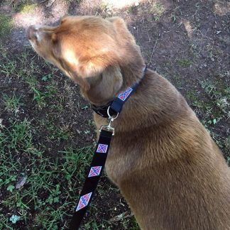 Dog collar and matching leash 2-piece set